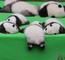 熊猫宝宝摔了一下!