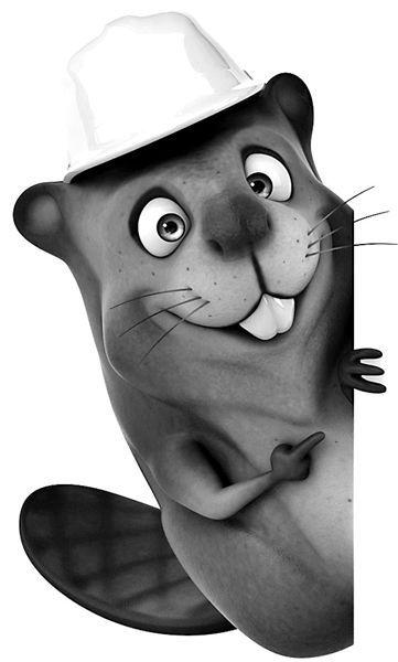 的土拨鼠表情包图片