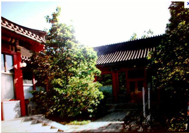 23日上午,田家英自缢于中南海永福堂(毛泽东书房).